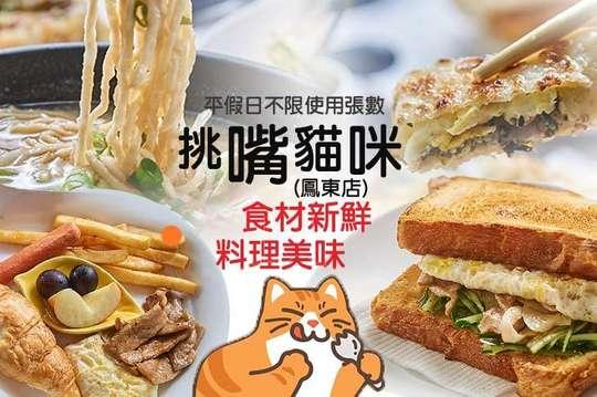 挑嘴貓咪(鳳東店)