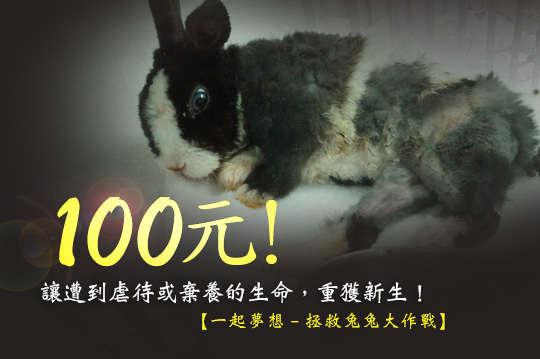 100元!【一起夢想-拯救兔兔大作戰】讓遭到虐待或棄養的生命,重獲新生!