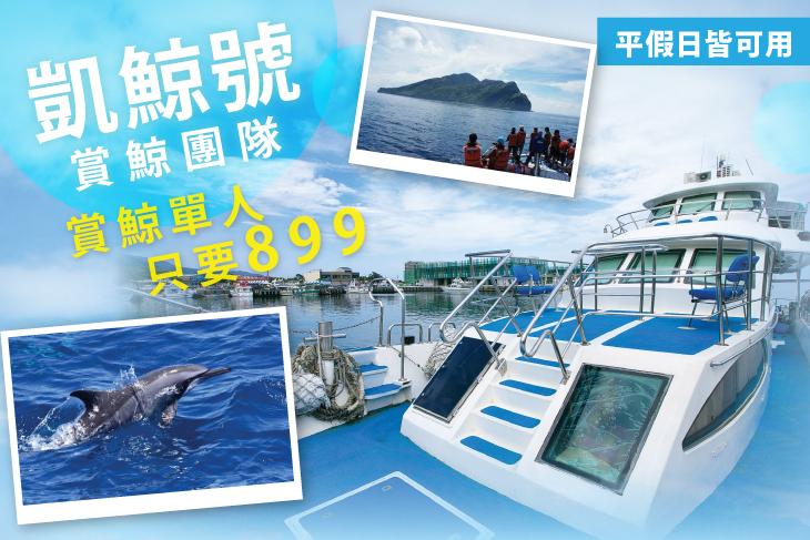 【宜蘭】宜蘭-凱鯨號賞鯨團隊 #GOMAJI吃喝玩樂券#電子票券#活動/門票
