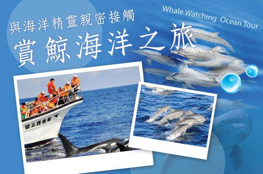 花蓮-鯨世界賞鯨