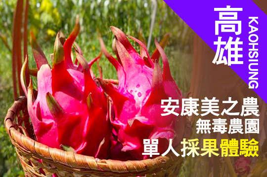 台灣休閒農業發展協會(採果)