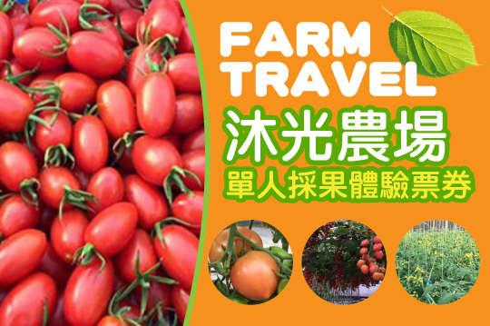 台中-沐光農場