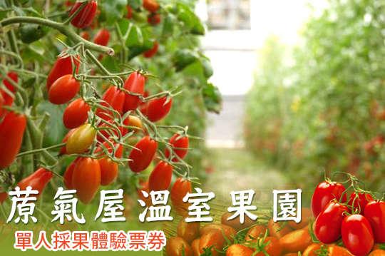 高雄-蒝氣屋溫室果園