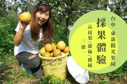 台中-東新觀光果園
