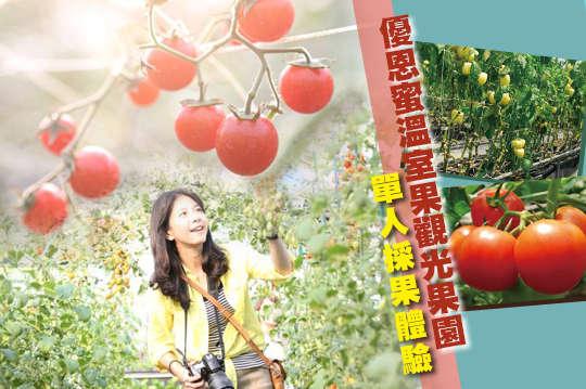 台中-優恩蜜溫室果觀光果園