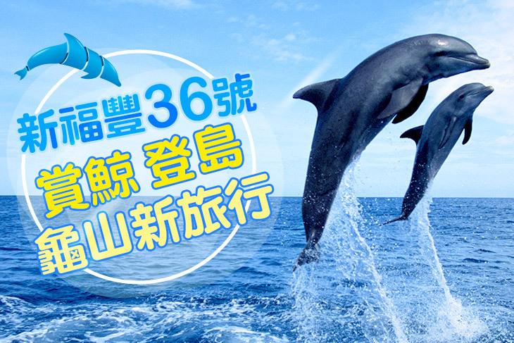 【宜蘭】宜蘭新福豐36號賞鯨旅遊 #GOMAJI吃喝玩樂券#電子票券#活動/門票