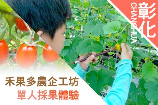 彰化-禾果多農企工坊