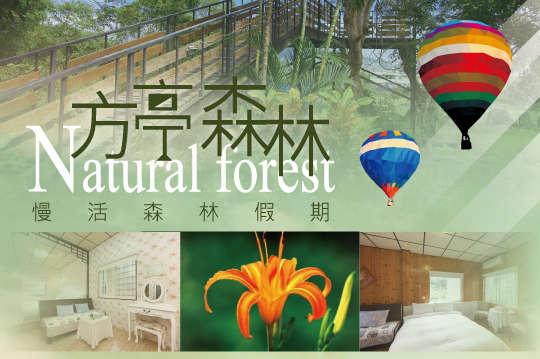 台東-方亭森林Natural forest