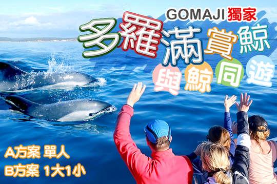 花蓮-多羅滿賞鯨