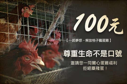 100元!尊重生命不是口號【一起夢想-解放格子籠蛋雞】邀請您一同關心蛋雞福利、拒絕藥殘蛋!