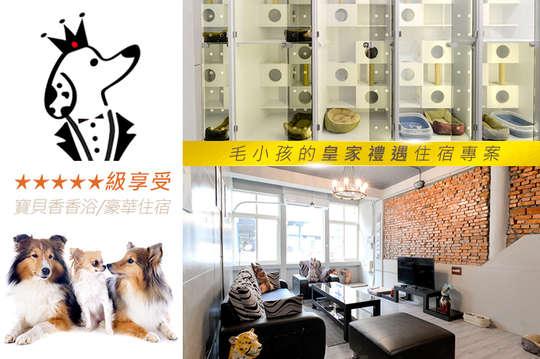 A.狗狗寶貝香香浴(小型犬) / B.狗狗寶貝香香浴(中型犬) / C.貓老大豪華住宿