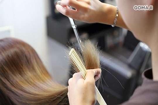 只要399元起,即可享有【KaDO卡豆髮型設計經典館】A.MATRIX經典完美洗剪護專案 / B.施華蔻/MATRIX超人氣造型剪染護專案(不限髮長) / C.MATRIX煥新頭皮護理+深層蘆薈護髮專案(不限髮長)