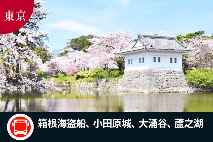 日本-東京一日遊(箱根海盜船、小田原城、大涌谷、蘆之湖)