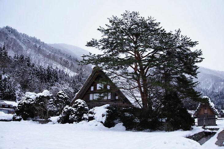 日本-JR PASS 高山、北陸地區鐵路周遊券