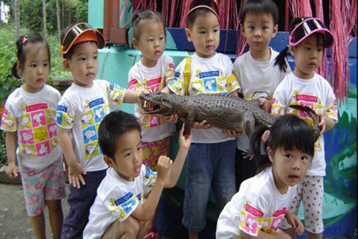 屏東-不一樣鱷魚生態休閒農場