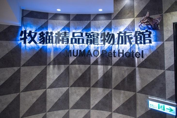 台南-牧貓精品寵物旅館