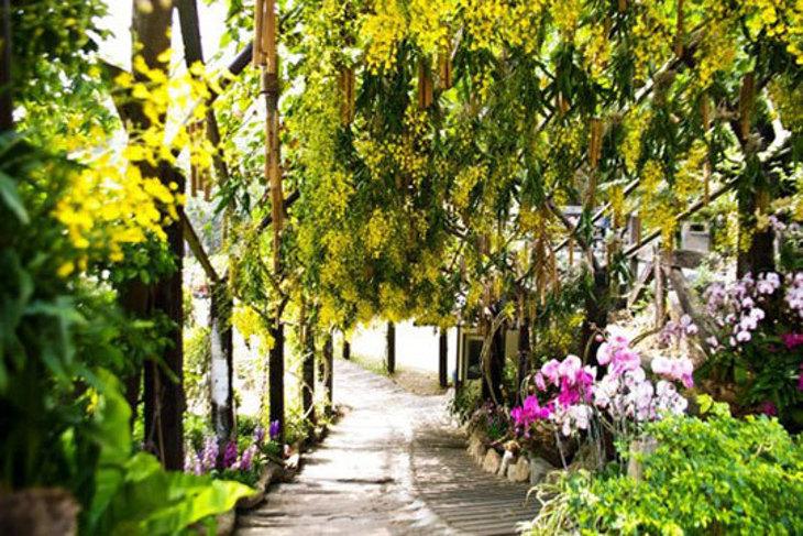 台南-大坑休閒農場