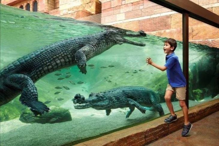 新加坡-河川生態園一日門票