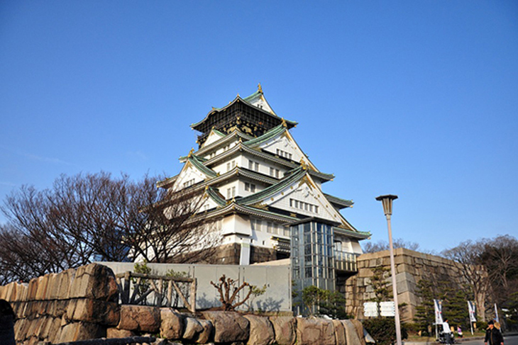 日本-南海電鐵特急 Rapi:t 號(兌換券)