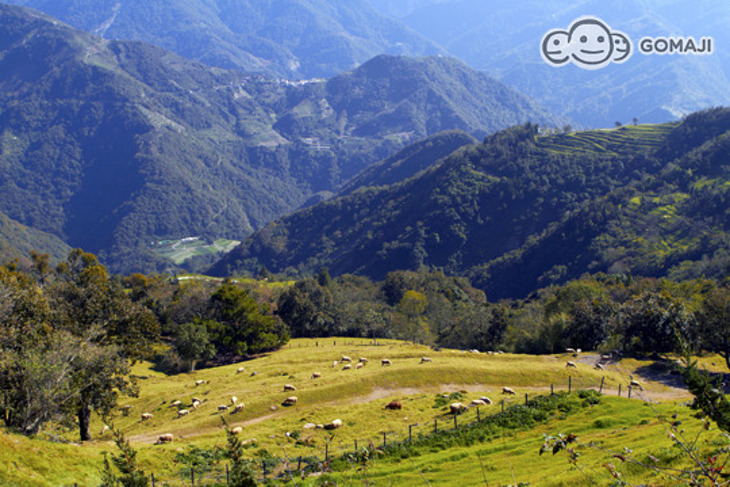 清境-儷景花園渡假山莊