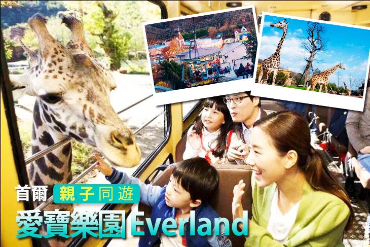 首爾愛寶樂園 Everland 一日門票
