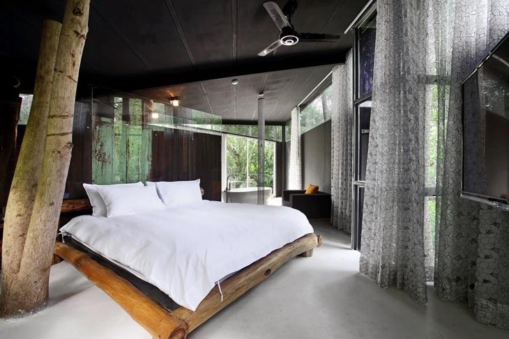 日月潭-九樹森林創意旅居