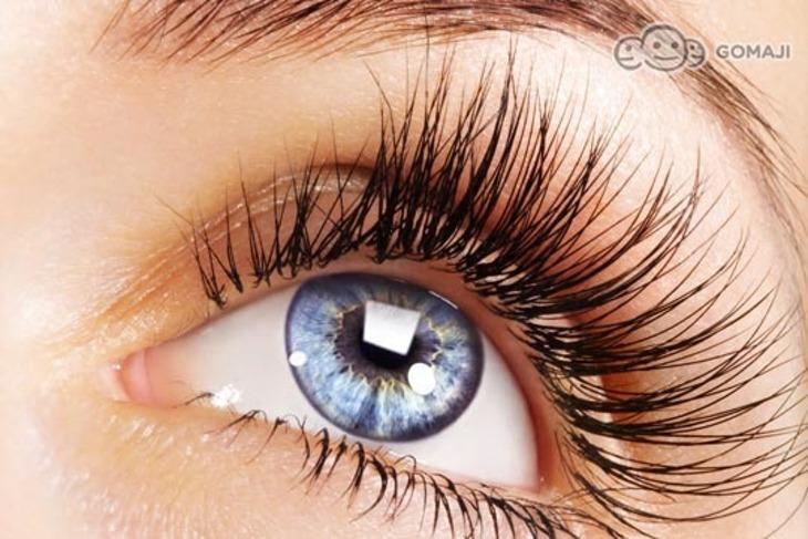 Eyelash Laminar 睫層次