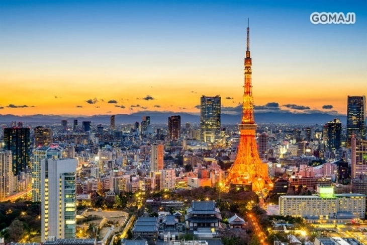香草航空(台北-東京)來回機票