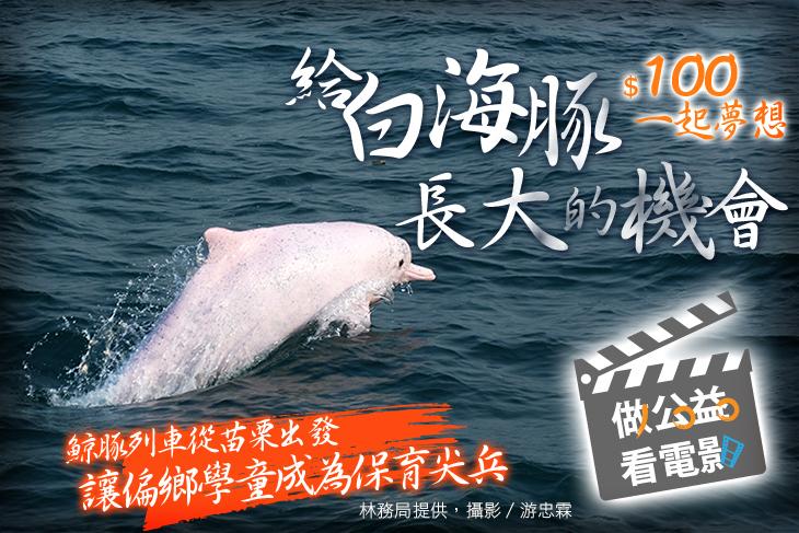 一起夢想-給白海豚長大的機會