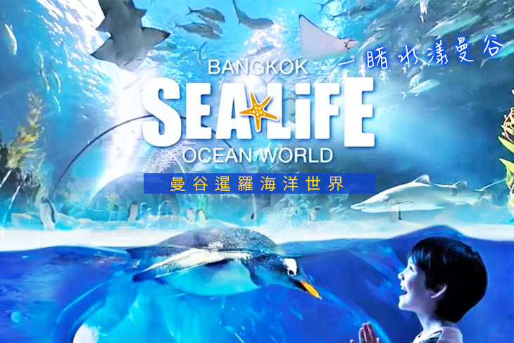 曼谷暹羅海洋世界門票Sea Life Bangkok Ocean World