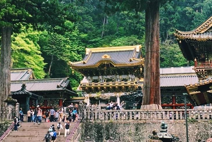 日本-東京一日遊(東照宮、江戶村主題樂園)