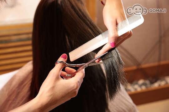 Lisa Hair Salon 麗莎專業美髮沙龍