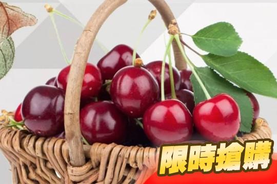 美國嚴選9R西北櫻桃禮盒