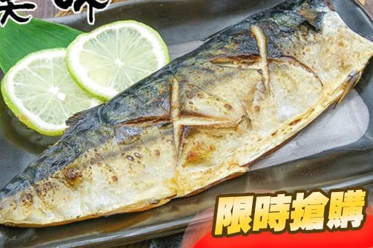XXL超厚正挪威薄鹽鯖魚