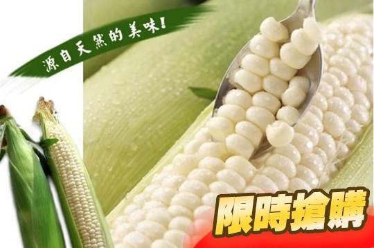 超爆汁大支牛奶水果玉米
